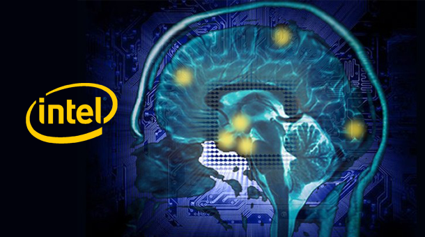 human brain research paper I'm a neuroscientist and my day-to-day research at oxford university strives i am optimistic and excited by what future research will reveal into the workings of the human brain donald trump jr and wife vanessa ditch their wedding bands with court papers revealing mother-of-five has.