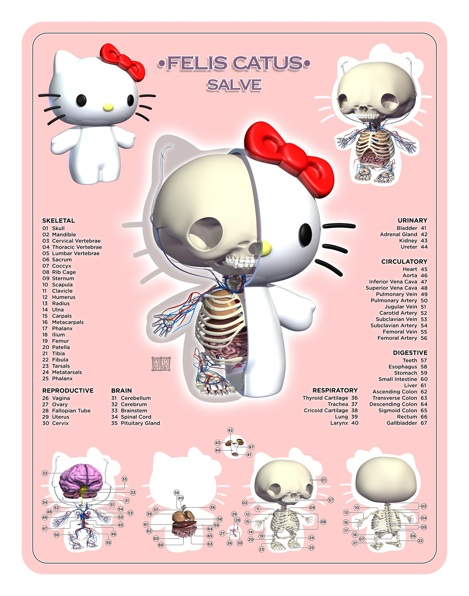 Hello-Kitty-Planche-Anatomie-Jason-Freeny-Sculpture-Geekorner
