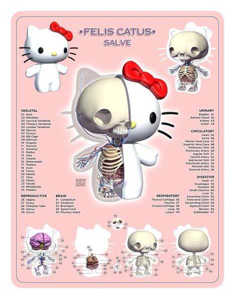 Hello-Kitty-Planche-Anatomie-Jason-Freeny-Sculpture-Geekorner