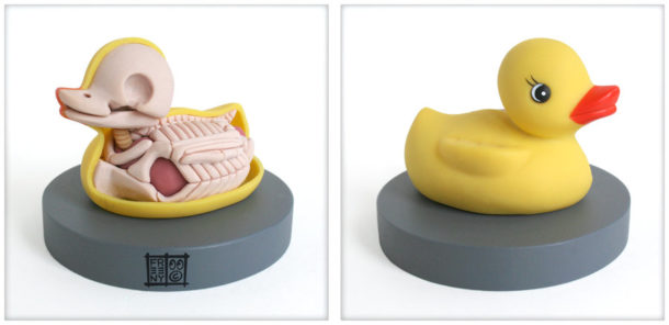 Rubbe-Ducky-Canard-en-plastique-Anatomie-Jason-Freeny-Sculpture-Geekorner