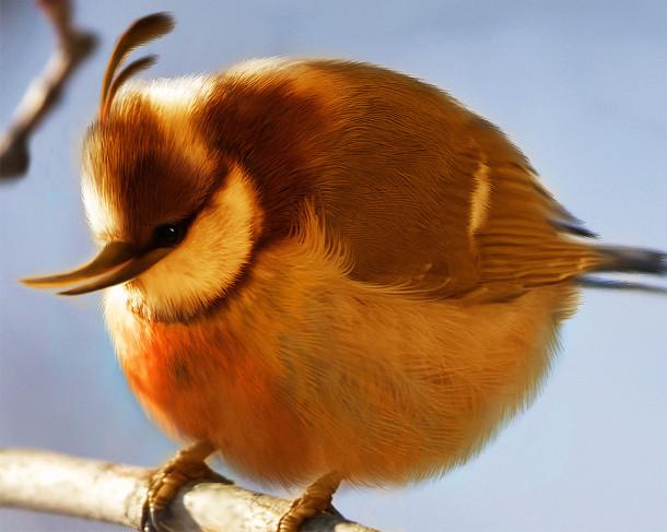 natural_angry_bird_baloon_bird_by_mohamedraoof-geekorner